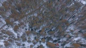 鸟瞰图与森林、树和多雪的峭壁的冬天snowscape 蓝天 33c 1月横向俄国温度ural冬天 影视素材