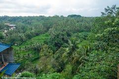 鸟瞰图传统和古色古香的巴厘语样式别墅设计 图库摄影