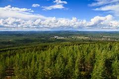 鸟瞰图在从Mejdasens观测塔的顶端森林 免版税库存照片