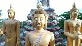 鸟瞰图寺庙在Chiangmai,泰国 影视素材