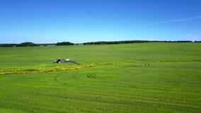 鸟瞰图拖拉机在绿色领域移动在蓝天下 股票录像