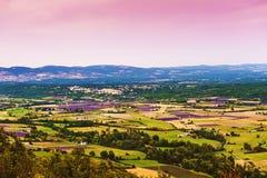 鸟瞰图淡紫色领域在普罗旺斯 免版税库存照片