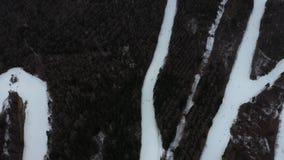 鸟瞰图滑雪操场和Mt 富士山在日本 影视素材