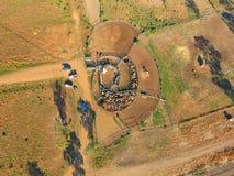 鸟瞰图澳洲内地牛召集 库存照片