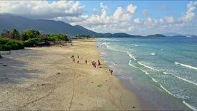 鸟瞰图热带宽海岸的人基于在天蓝色的海洋 股票视频