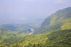 鸟瞰图热带森林 免版税库存照片
