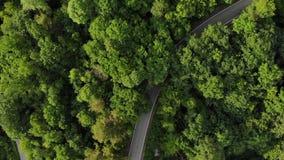 鸟瞰图白色驾车在森林电影寄生虫的乡下公路射击了飞行 股票录像