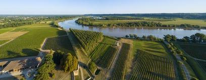 鸟瞰图红葡萄酒葡萄园和加龙河河 图库摄影
