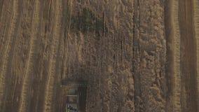 鸟瞰图联合收获一块麦田 股票录像