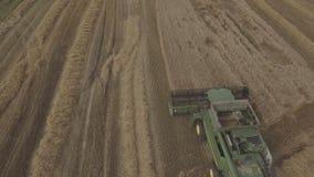 鸟瞰图联合收获一块麦田 股票视频