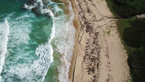 鸟瞰图:加勒比海滩,巴巴多斯 免版税库存图片