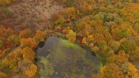 鸟瞰图 在地形的飞行秋天时间的 股票视频