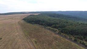 鸟瞰图 在的飞行绿色象草的岩石小山 俄罗斯,斯塔夫罗波尔,山Strizhament 影视素材