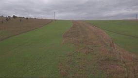 鸟瞰图 在领域的飞行在乡下附近 秋天横向 股票视频