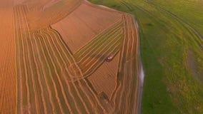 鸟瞰图 有收割机的农田 影视素材