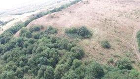 鸟瞰图 飞行在美丽的山和美丽的森林空中摄影机射击 斯塔夫罗波尔,山 影视素材