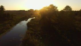 鸟瞰图 飞行在美丽的河和美丽的森林 股票录像