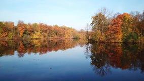鸟瞰图 飞行在美丽的秋天河 空中摄影机射击 股票视频