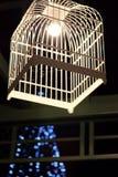 鸟笼灯 图库摄影