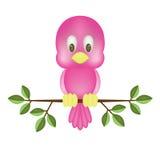 鸟粉红色 免版税库存照片