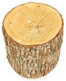 鸟粪便查出的日志结构树 免版税图库摄影