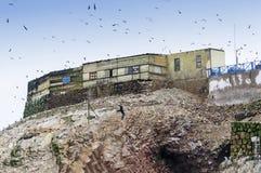 鸟粪收藏家的房子在Islas Ballestas,秘鲁 免版税库存照片