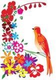 鸟红色 免版税库存图片
