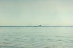 鸟群在海天线的在有雾的天气 免版税库存图片