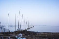 鸟自然保护在安徽冬天雾的shengjinhu湖 库存图片