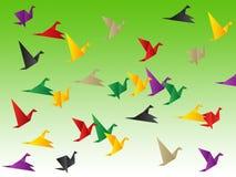 鸟自由展示发生并且逃避 库存图片