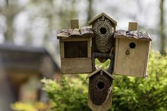 鸟舍和鸟饲养者 库存照片