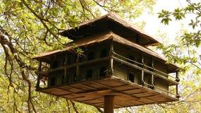 鸟舍在森林里 库存图片