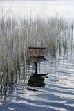鸟舍在水中 免版税库存图片