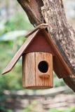 鸟舍结构树 免版税图库摄影