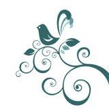 鸟花卉模式 库存照片