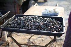 鸟蛤在市场上 免版税库存图片