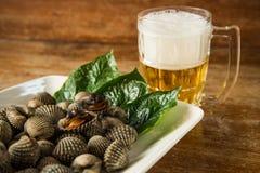 鸟蛤被烧的和冰镇啤酒 免版税图库摄影