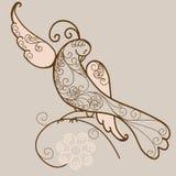 鸟装饰品向量 库存例证