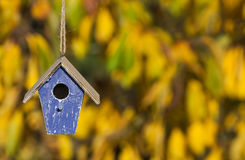 鸟议院在秋天秋天阳光&金黄叶子下 免版税库存照片