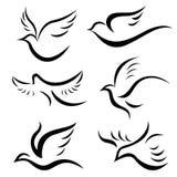 鸟设计向量 皇族释放例证