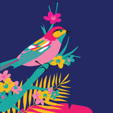 鸟设计 图库摄影