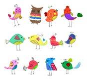 鸟逗人喜爱的集 免版税图库摄影