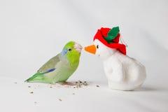鸟遇见雪人 免版税库存照片