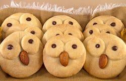 鸟面孔曲奇饼 库存照片