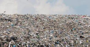 鸟飞行在转储的巨大的垃圾废物小山在非回收县 影视素材