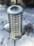 鸟饲养者在一个多雪的庭院里 图库摄影