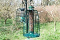 鸟饲养者 库存图片