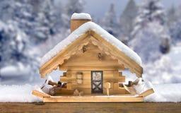 鸟馈电线房子冬天 免版税库存图片