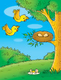 鸟黄色 免版税库存照片