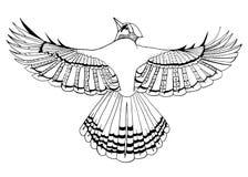 鸟黑白的线艺术 库存照片